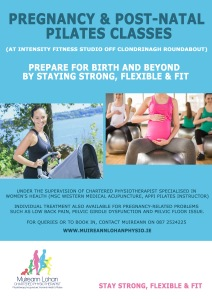Pregnancy and Post Natal Classes Poster MR